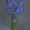 bluebells in vase