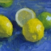Lemons and limes sketch